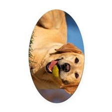 yellow lab ipad Oval Car Magnet