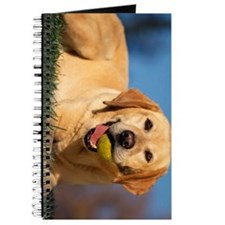yellow lab ipad Journal