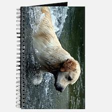 labradoodle ipad Journal
