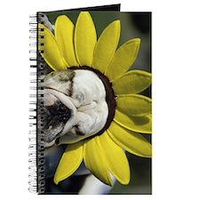 bd flower ipad Journal