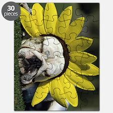 bd flower ipad Puzzle