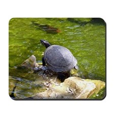 turtle note card Mousepad