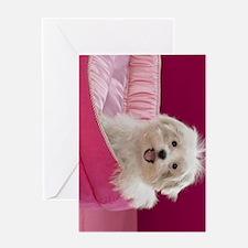 pink pup ipad Greeting Card
