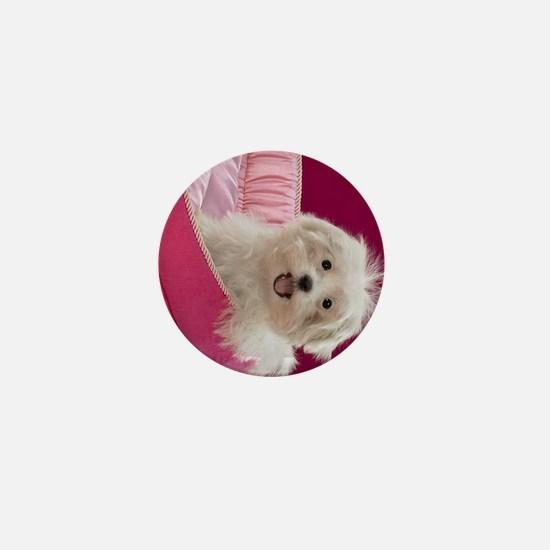 pink pup ipad Mini Button