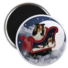 I Believe Shirt Magnet