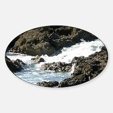 North Shore Sticker (Oval)