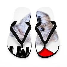I Love My Schnoodle Flip Flops