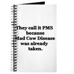 They Call it PMS.... Journal