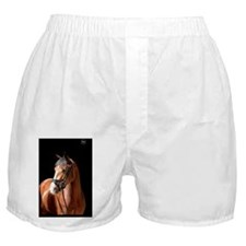 baymare_rect Boxer Shorts