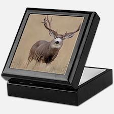 Desk top November 2010e Keepsake Box
