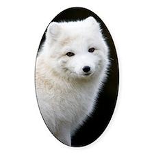 Artic Fox Decal