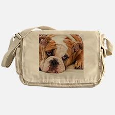 BulldogPuppy Messenger Bag
