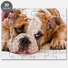 BulldogPuppy Puzzle