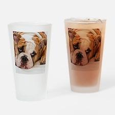BulldogPuppy Drinking Glass