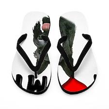 I Love My Scottie Flip Flops