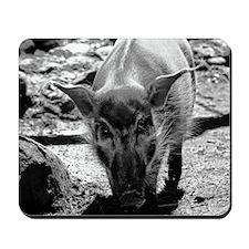 (15) Evil Pig Mousepad