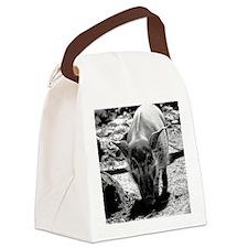 (15s) Evil Pig Canvas Lunch Bag