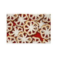 rosettes_sb Rectangle Magnet