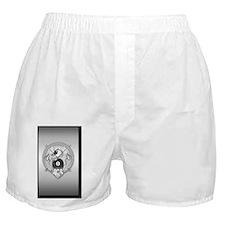 8-ball dragon 5x8_journal Boxer Shorts
