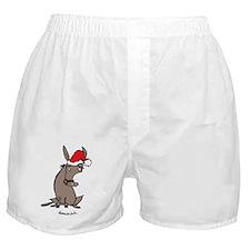dunkycnnnnnnnnnnnolorbig Boxer Shorts