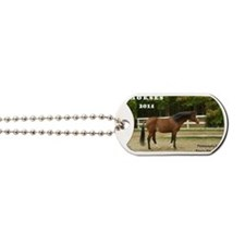 F0386 Sir Knight Cover Dog Tags