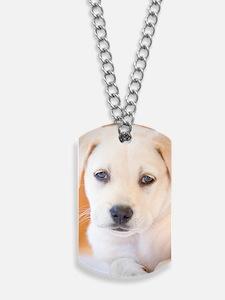 LabPuppy-17 Dog Tags