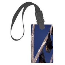 Ipswich Grey-headed flying foxes Luggage Tag