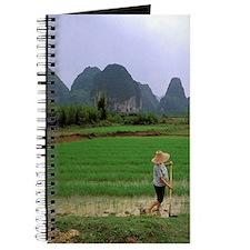 China, South China. Guilin / Yangzhou rice Journal