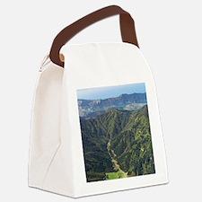 New Zealand - aerialborough Sound Canvas Lunch Bag