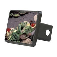 Asia, Vietnam, Saigon. Veg Hitch Cover