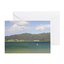 Pohutukawa Tree, Whangarei Harbour,  Greeting Card