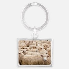 Flock of sheep, North Island, N Landscape Keychain