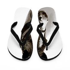 Horse Flip Flops