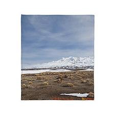 Rangipo Desert and Mt Ruapehu Throw Blanket