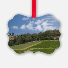 Grapes growing in vineyard, Hunte Ornament