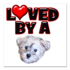 """Loved by a Schnoodle Square Car Magnet 3"""" x 3"""""""
