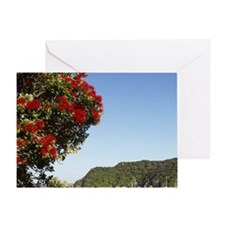 Pohutukawa Trees, Russell, Bay of Is Greeting Card