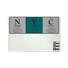 NYC Color BG + logo Rectangle Magnet