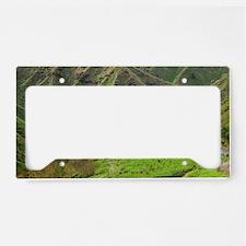 Forgotten World Highway (Taum License Plate Holder
