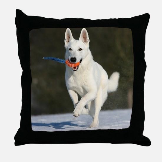 cp_vert_jan_wss Throw Pillow