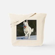 cp_vert_jan_wss Tote Bag