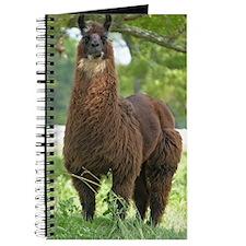 blk_llama_iphone3G Journal