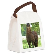 blk_llama_panel Canvas Lunch Bag