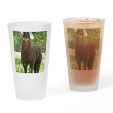 blk_llama_panel Drinking Glass