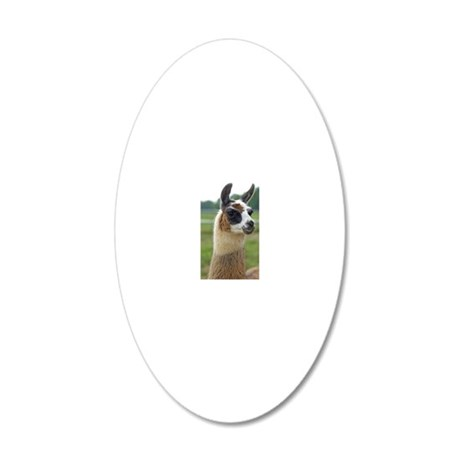 llama2_iphone4s 20x12 Oval Wall Decal