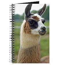 llama2_iphone4s Journal
