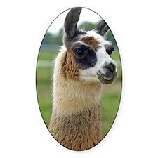 llama2_iphone4s Decal