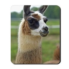 llama2_journal Mousepad
