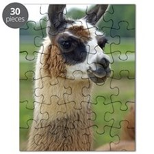 llama2_journal Puzzle