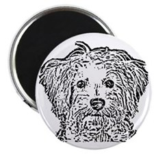 Schnoodle_bw Magnet